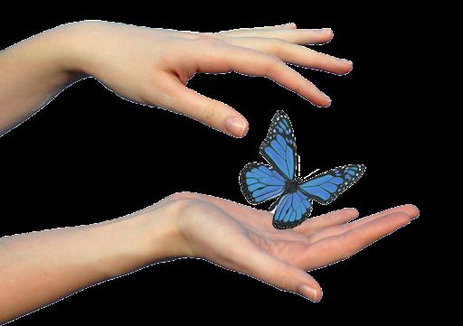 Студія «Метелики» проводить заняття з розвитку слуху у дітей